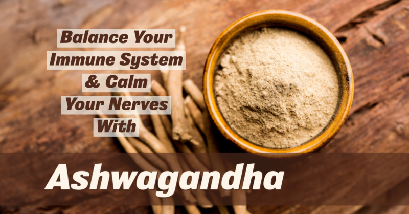 Balance Your Immune System and Calm Your Nerves with Ashwagandha