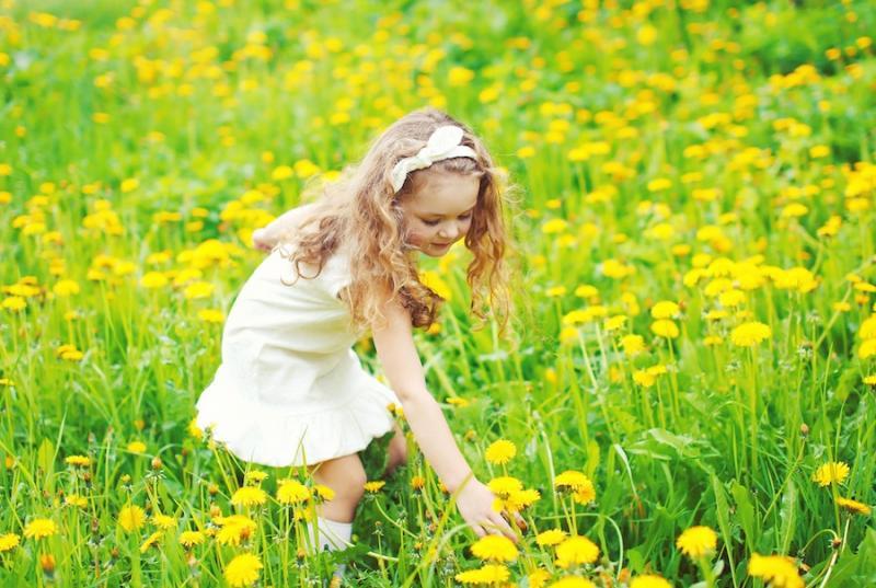 Girl Picking Dandelions