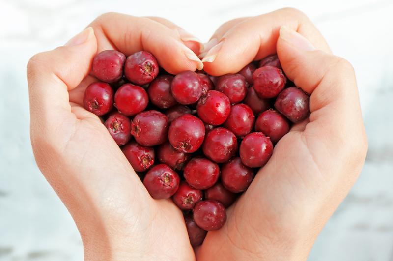 Hawthorn Berries Heart