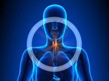 A Holistic Approach to Thyroid Disease